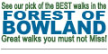 Walk our pick of The Best Walks in The Forest of Bowland - Walks you must not miss!