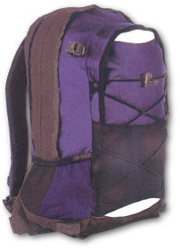 Regatta T430 X-ERT25-30 Day Pack