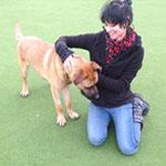 Female Walker, 40, go4awalk.com Account Holder based near Cheltenham