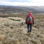 Male Walker, 53, go4awalk.com Account Holder based near Leyland, Lancahire.