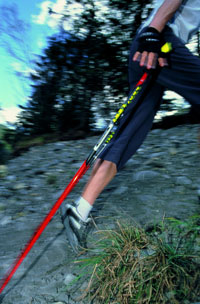 Nordic Walking Training Session