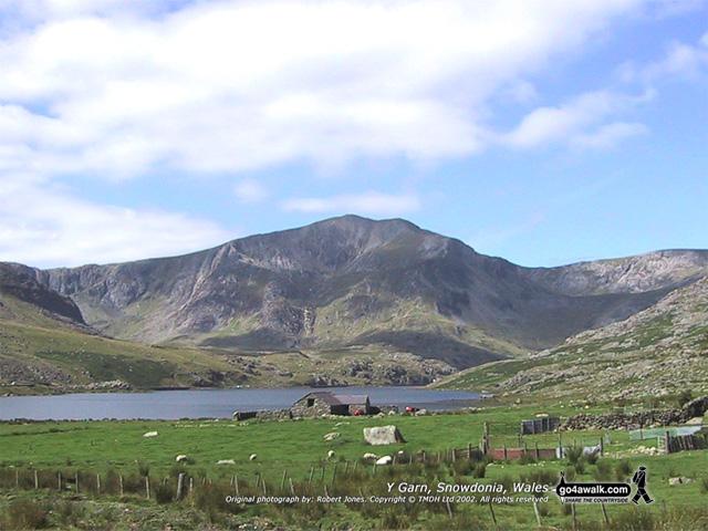 Y Garn (Glyders) from Glan Dana, The Carneddau,<br>Snowdonia National Park, Conwy, Wales
