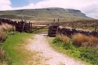 Pen-y-ghent - The 1st of the Yorkshire Three Peaks