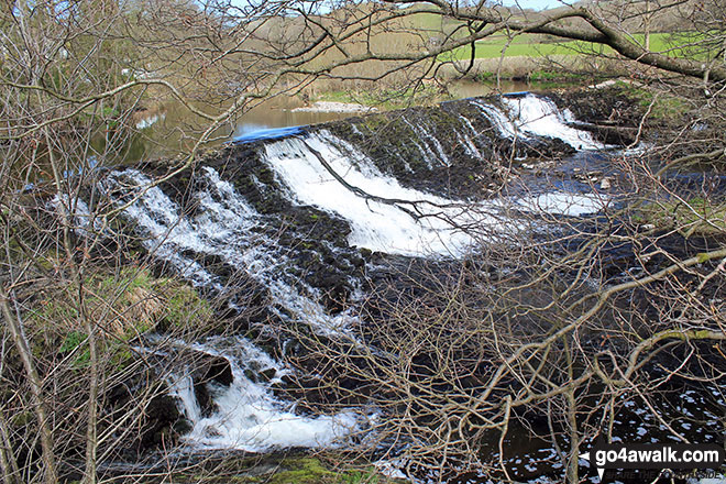 The weir on the River Kent, Staveley