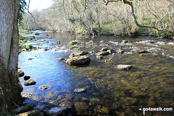 The River Kent near Staveley