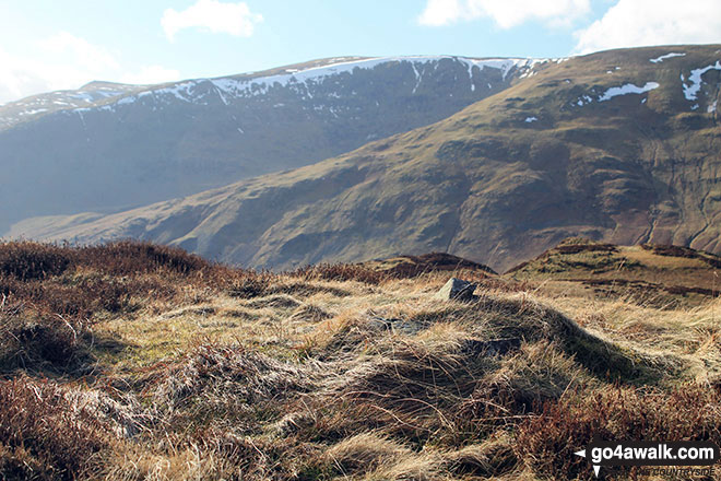 Whether Hill from the summit of Kit Crag (Naddle Forest)