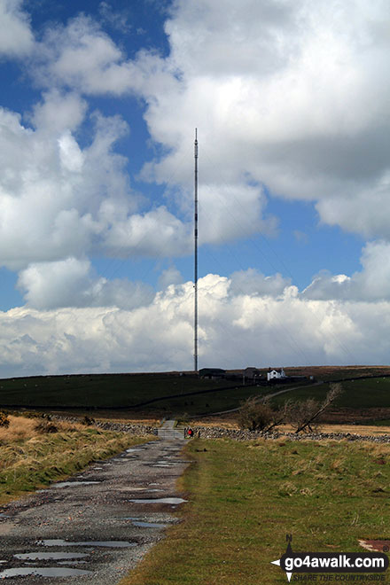 Brocklebank Telecommincations Mast from Faulds Brow
