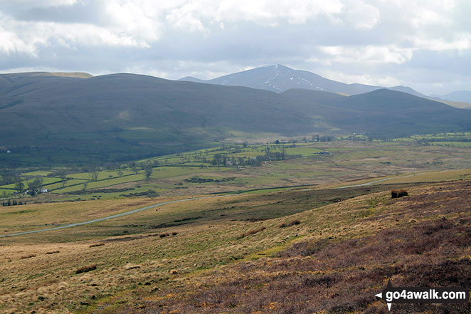 Skiddaw from Faulds Brow