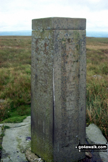 Boundary Stone on Top of Leach, Cowpe Moss