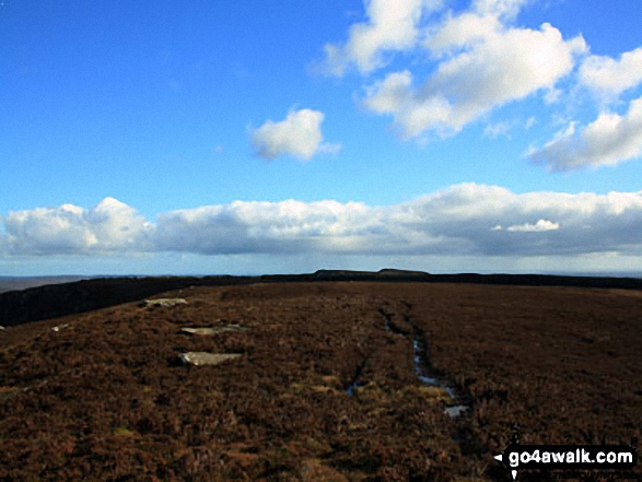 East towards Simonside from the top of Tosson Hill