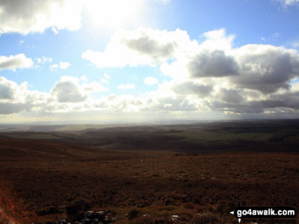 South across Harwood Forest from the summit of Tosson Hill