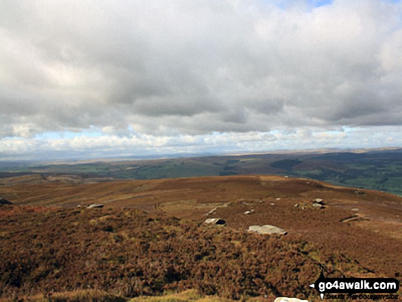 West to The Kielder Forest from Tosson Hill trig point