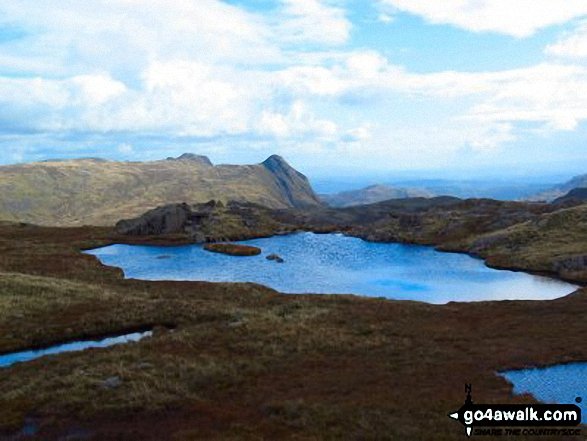 The Langdales from High House Tarn
