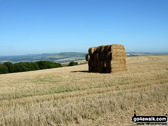 Hay Bale Stack on The South Downs Way where it crosses Steyning Round Hill