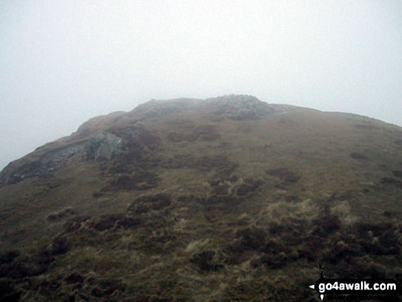 Barf summit appears out of the mist
