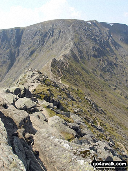 Walk c264 The Grisedale Round from Patterdale - On Striding Edge - looking up to Helvellyn