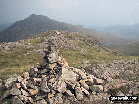 Pike of Blisco (Pike o' Blisco) from the summit cairn on Great Knott