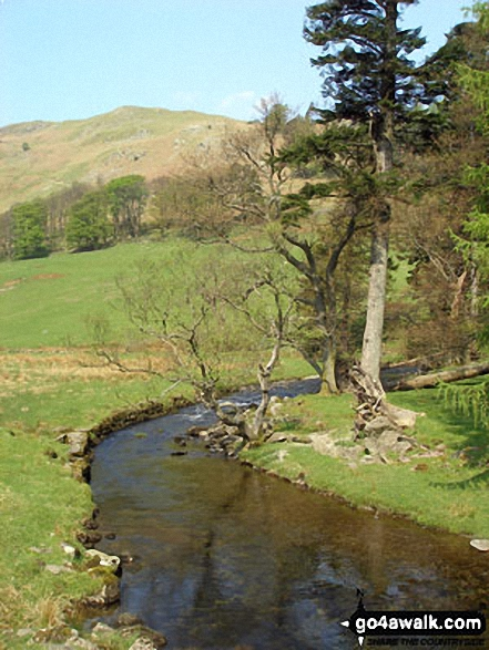Grisedale Beck with Birkhouse Moor beyond