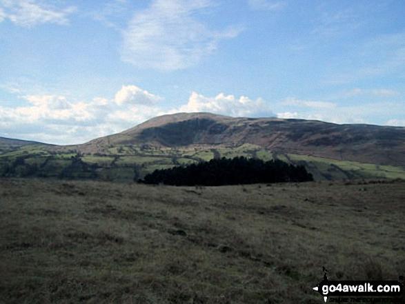 Calf Top from Long Moor (Dentdale)