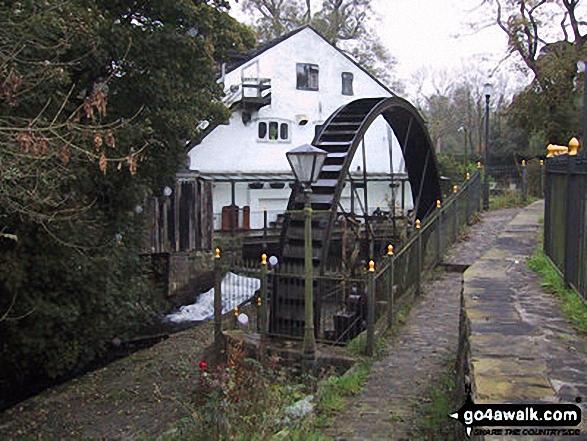 Water Wheel nr Rowarth