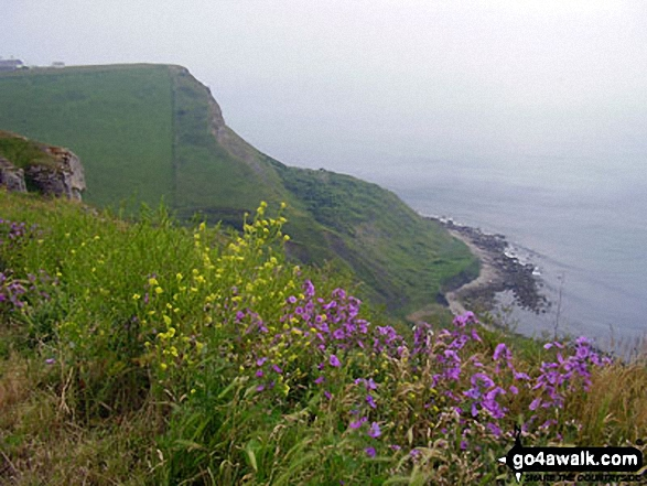 St Aldhelm's Head (or St Alban's Head) from Emmetts Hill, The South West Coast Path