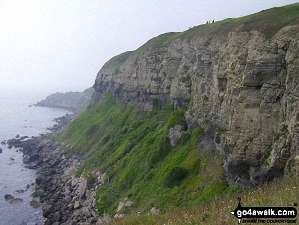 Cliffs East of St Aldhelm's Head (or St Alban's Head), The South West Coast Path
