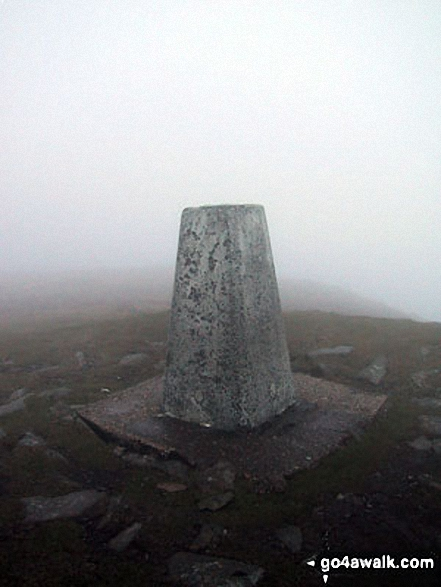 The trig point on the summit of Cadair Berwyn (North Top)