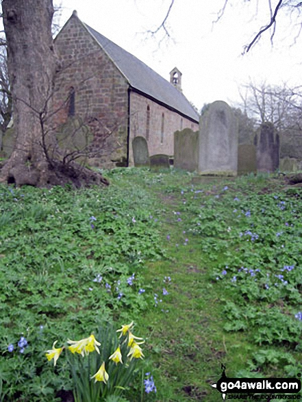 Doddington Church in the spring