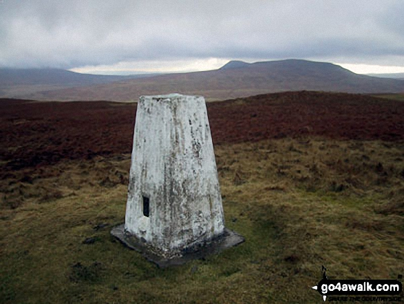 Pen-y-ghent from Horse Head Moor summit trig point