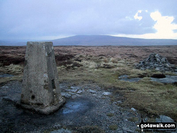Buckden Pike from Firth Fell summit trig point