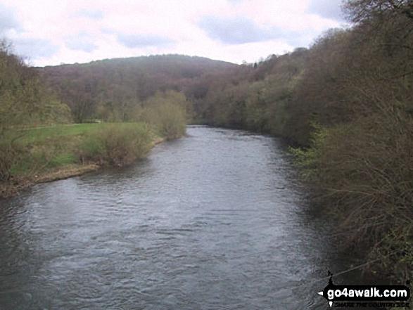 Walk gl119 The River Wye from Symonds Yat - The River Wye