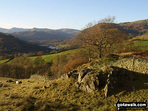 Rydal Water with Langdale Pikes beyond from High Sweden Coppice. Walk route map c247 The Fairfield Horseshoe from Ambleside photo