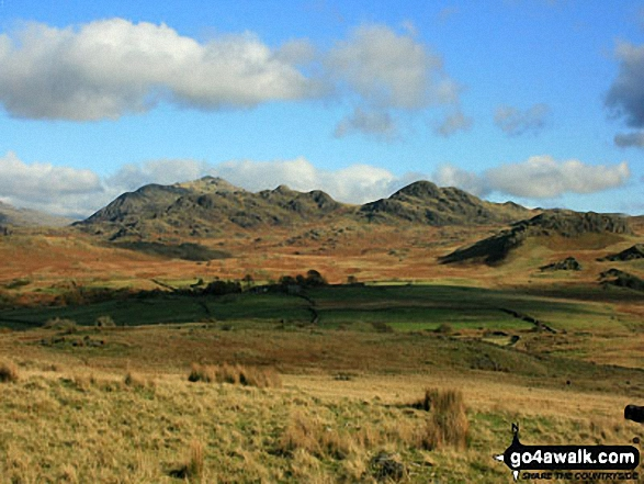 Walk c440 Whin Rigg, Illgill Head and Boat How from Miterdale Bridge - Harter Fell and Green Crag from Boat How
