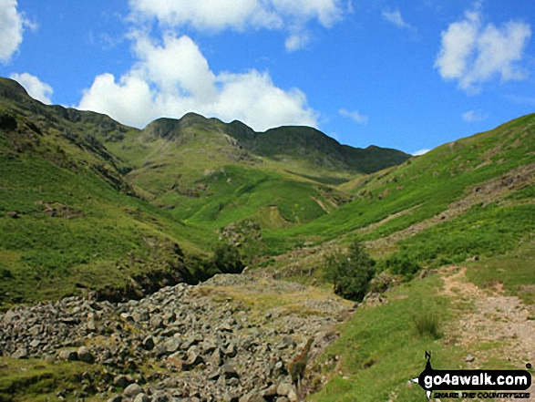 Crinkle Crags (Crinkle, Crags (South Top), Crinkle Crags (Long Top), Crinkle Crags (Gunson Knott), Shelter Crags & Shelter Crags (North Top)) from Oxendale