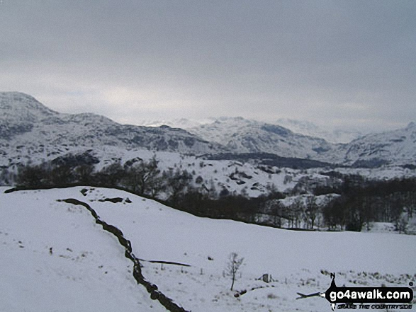 Wetherlam with the Langdale Pikes beyond from Iron Keld near Tarn Hows
