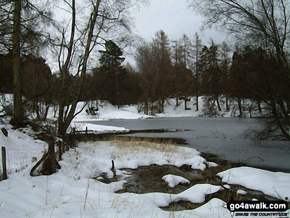 Tarn Hows in the snow