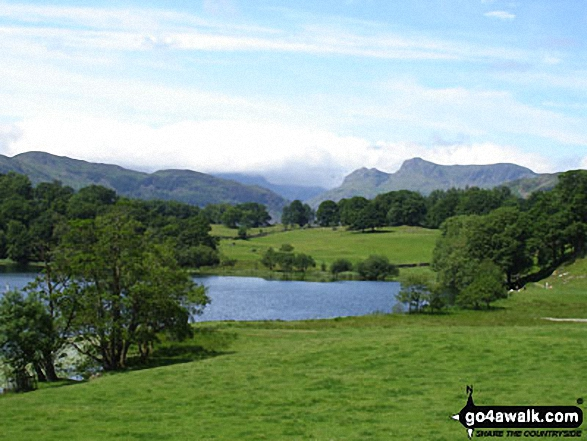 Loughrigg Tarn and the Langdale Pikes from below Ivy Crag