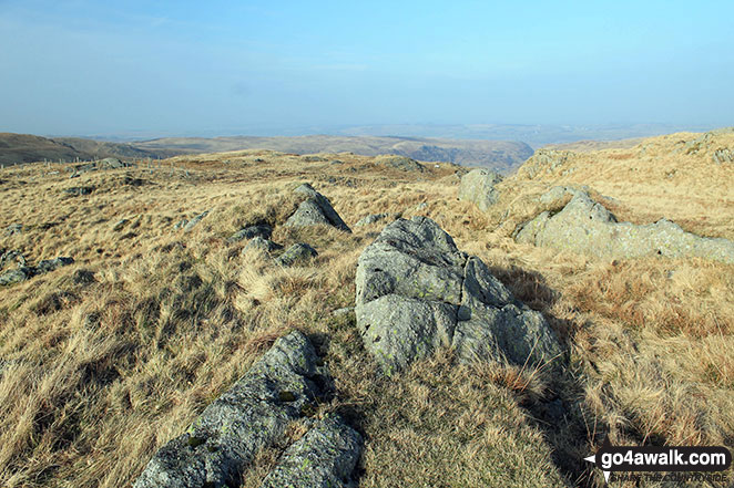 The summit of Howes (Mosedale)