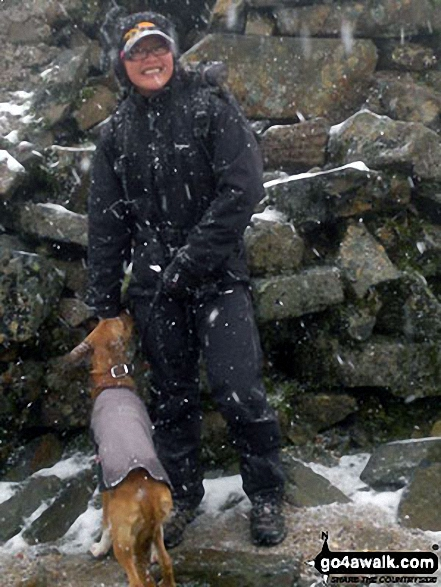 Walk Picture/View: Me and my pup Cocoa 'Mountain Dog' on top of Ben Nevis for the 1st time!!! in Fort William and Loch Linnhe to Loch Ericht, Highland, Scotland by Bay Wan (1)