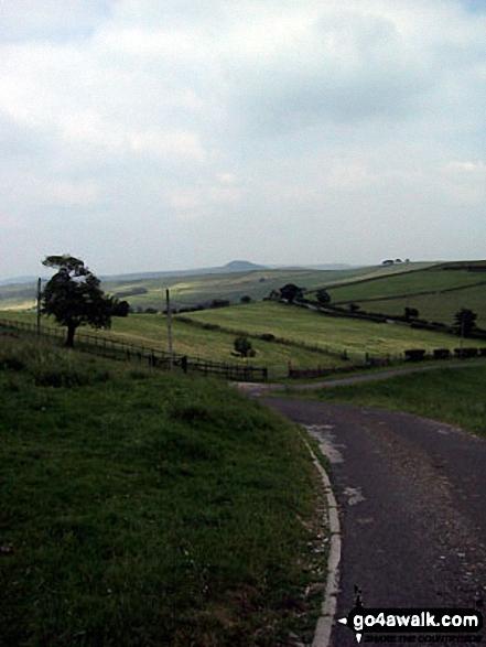 Shutlingsloe from The Gritstone Trail on Croker Hill