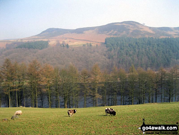 Hurkling Stones (left) and Whinstone Lee Tor (right) above  Ladybower Reservoir from the lower slopes of Crokk Hill (Ladybower) near Crookhill Farm