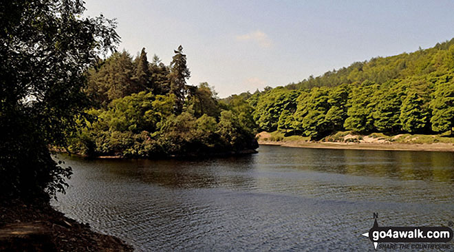 Island Plantation in the middle of Derwent Reservoir