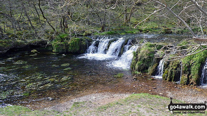 The River Lathkill in Lathkill Dale