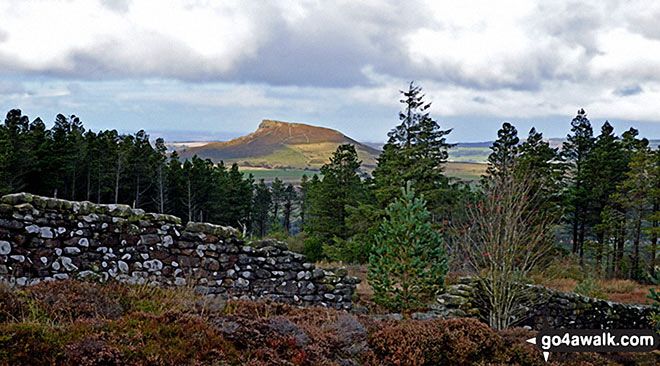 Roseberry Topping from near Captain Cook's Monument on Easby Moor