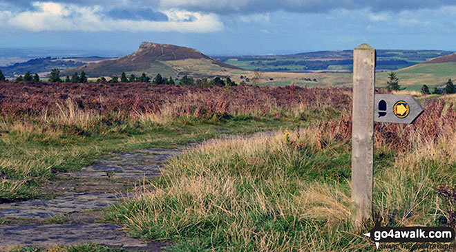 Roseberry Topping from the Cleveland Way near Captain Cook's Monument on Easby Moor