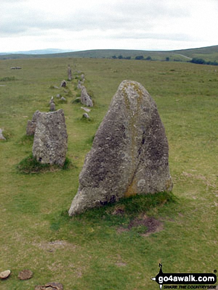 Walk de122 North Hessary Tor, Great Mis Tor and Great Staple Tor from Princetown - Stone Rows near Yellowmeade Farm