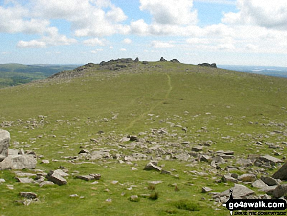 Walk de122 North Hessary Tor, Great Mis Tor and Great Staple Tor from Princetown - Great Staple Tor from Roos Tor