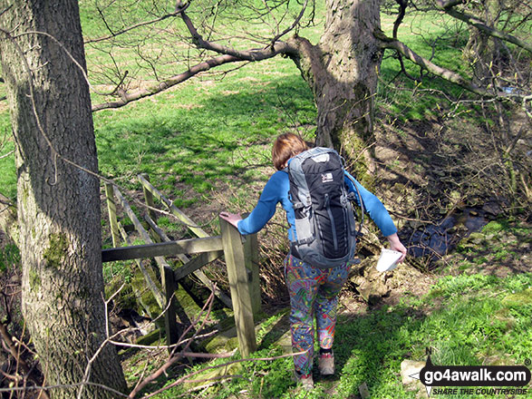 My wife descending to cross a stream near  to the River Hamps near Butterton Moor End Farm