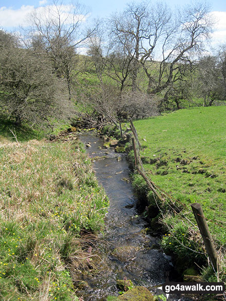 Stream near Black Brook Farm