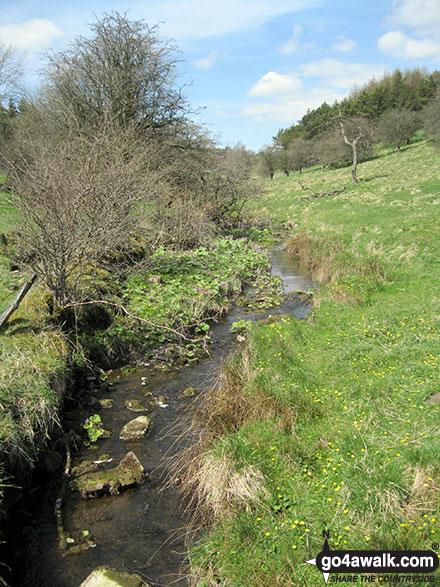 Stream near Breech Farm